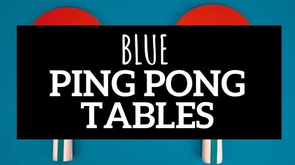 BLUE PING PONG TABLE