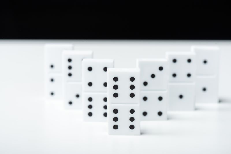 different dominoes lined up on a table